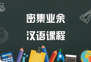 密集业余汉语周末班晚班课程